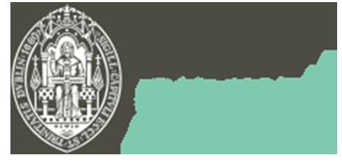 Christ Church Cathedral Dublin Logo