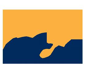 Dublin City University (DCU) Logo
